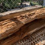 Altbau Südseite - zerstörte Schwelle